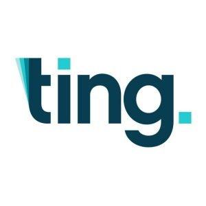 ting_logo2.jpg